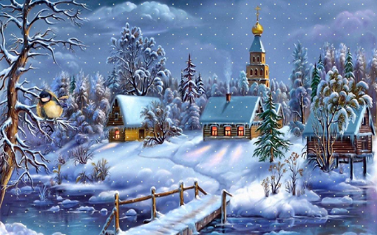 Christmas Trees Dublin